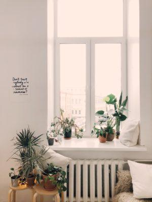 Plastfönster